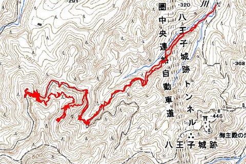 141203滝ノ沢林道28.JPG