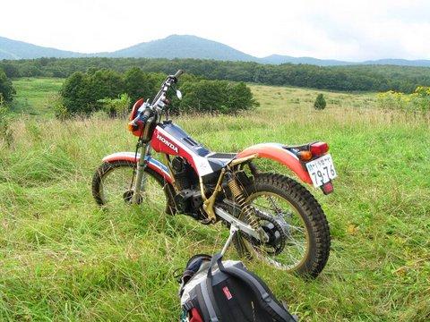 TLR200-09.jpg
